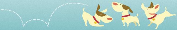 Dog website play fetch dog