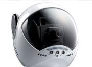 dog webcam