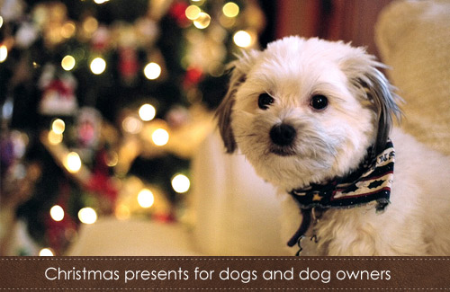 Christmas presents for dogs and dog owners