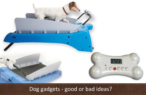 Dog gadgets we all need, or not