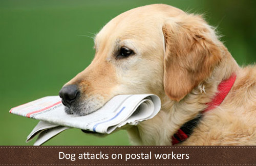 New dog laws for attacks on postal workers?
